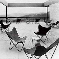 Mid-century Modern Furniture #ButterflyChair