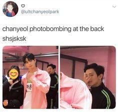 Eunwoo got his picture w Yeolie Baekhyun, Park Chanyeol, Funny Kpop Memes, Exo Memes, Baekyeol, Chanbaek, Super Junior, K Pop, Monsta X