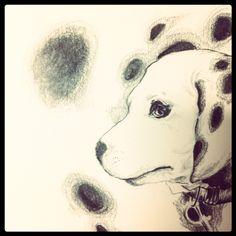 dot dog