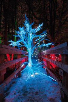 9 creative photo ideas to try in January: shoot light sculptures