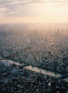 week 5_ Tokyo's bird eye view. what if city is extending beyond the range of people's daily life? What if people of city can not get on top of the speed of city's sprawling? We need to think about the indiscriminate spreading of city.