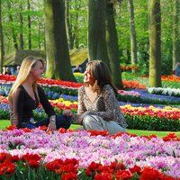 Visit Keukenhof, located in South Holland. Keukenhof is known as the Garden of Europe.  More than 7 million bulbs bloom in the Spring. Best time to visit is mid-April.