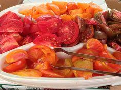 Heirloom tomatoes. Yum.