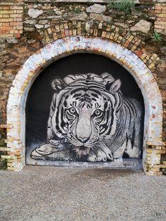 https://flic.kr/p/SmRtFW | El tigre pasmado | Pues sí, este grafiti no asusta. Y es que hay artistas del espray y espraytontos. Ante éste me quito el sombrero