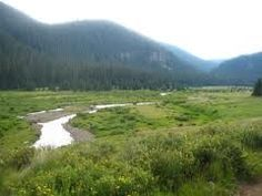 Image result for valle vidal