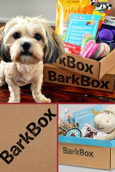 Show your pet some love and get them a #Bark Box subscription