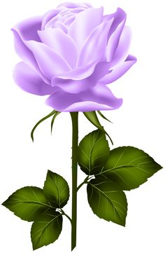 Purple Rose with Stem PNG Clip Art