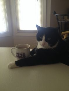 I don't always drink coffee but when I do I always poop -A lot