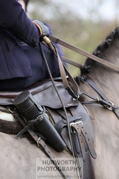 Sidesaddle profile, via Flickr.    www.Hurworth-Photos.co.uk