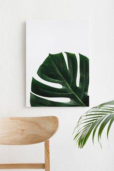 Monstera Leaf Botanical Art Print, Minimalist Art Print (Digital Print) — Minimalism Minimalist House Design, Minimalist Decor, Easy Canvas Art, Plant Illustration, Plant Wall, Botanical Art, Printing Services, Digital Prints, Original Art