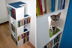 BEHOLD THE GLORY: the 'CatCase' by Urban Cat Design    The CatCase is a bookcase that doubles as a playground for your cat. With carpeted steps and pathways in between spaces for books, your feline friends can hide out in pathways, jump around, and climb the shelf till they reach the top.   At the same time, your books would be completely safe from your playful pets' scratches, as each cubicle would have a back wall. via DesignTAXI.com