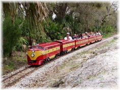 Champ The Train At The Central Florida Zoo And Botanical Gardens