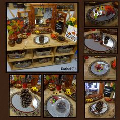 "Exploring autumn goodies from Rachel ("",)"