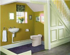 1000 Ideas About Upflush Toilet On Pinterest Basement