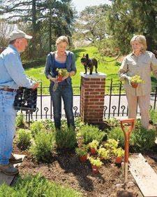 Martha's Herb Garden Basics