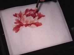 Watch this instructional painting video to paint a hot red peony with watercolors on Chinese rice paper. This fluid style of painting takes lot of practice and does not allow for mistakes. Every brush stroke counts. Get out some newsprint to practice painting these beautiful peony flowers.