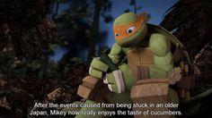 Headcanons Await! Ninja Turtles Art, Teenage Mutant Ninja Turtles, Cartoon Network Adventure Time, Adventure Time Anime, Turtle Facts, Tmnt 2012, Cartoon Shows, Pokemon Cards, Digimon