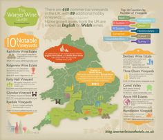 a-Warner-Wine-Guide-Infographic