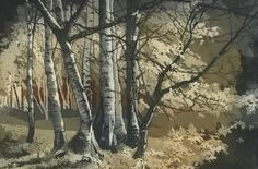 Etching, Birch Grove by Chrissy Norman