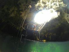 Cenote La Noria, Puerto Morelos: See 29 reviews, articles, and 8 photos of Cenote La Noria, ranked No.13 on TripAdvisor among 39 attractions in Puerto Morelos.