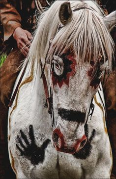 The Horse symbol means combine the grounded power of the earth with the whispers of wisdom found in the spirit winds
