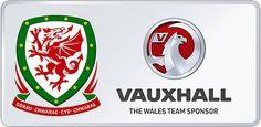 Wales vs Netherlands---2nd of June 2014