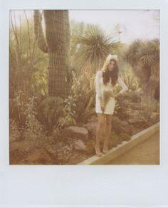 cactus polaroid wedding