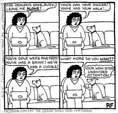 Off the leash cartoons ...so true to the life of my pooches!