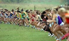 Fall = cross country season
