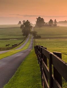 Road through Kentucky farmland by Rick Scalf