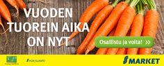 """Sikke Sumari vannoo: """"Tässä on maailman helpoin ja paras mustikkapiirakka!"""" - Ajankohtaista - Ruokala - Ilta-Sanomat"""