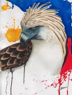 Image result for filipino painting of a philippine eagle