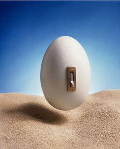 Ryszard Horowitz Photocomposer - Analog Portfolio Egg switch '71