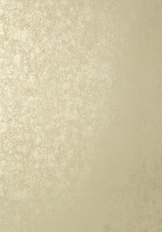 FAUX TORTOISE, Metallic Champagne, T57165, Collection Texture Resource 5 from Thibaut
