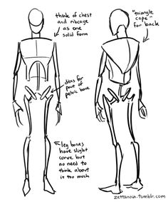 Anatomy Drawing zettanoia - An Anatomy Tutorial - Heya sorry this took so long! OK so just a disclaimer before I begin: I still have a LOT of room to improve as an artist, plus I actually don't take the time to study anatomy very much myself lol so. Body Reference Drawing, Anatomy Reference, Art Reference Poses, Hand Reference, Art Poses, Drawing Poses, Drawing Tips, Drawing Tutorials, Painting Tutorials