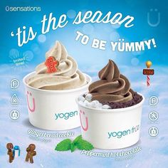 "@yogenfruz's photo: ""'tis the season to be yümmy! Try our delicious Holiday Flavours: Gingerbread Cookie, and Peppermint Hot Chocolate. *available for a limited time only*  #TisTheSeason #GingerbreadCookie #PeppermintHotChocolate #YogenFruz"""