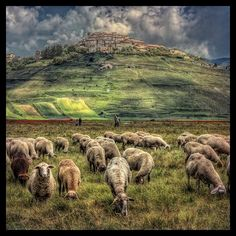 Beautiful Castelluccio, Umbria, Italy | Roberto Ricci Nikon D700 ƒ/18.0  66.0 mm 1/60  200