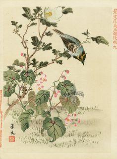 Keibun, 1894. Kano School Japanese Woodblock Prints c.1890.