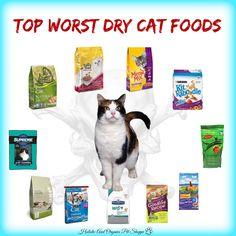 Best To Worst Dry Cat Food