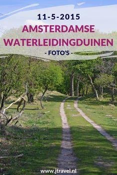 Tijdens mijn tweede bezoek aan de Amsterdamse Waterleidingduinen in 2015 maakte ik opnieuw een wandeling vanaf de ingang Panneland en spotte veel damherten. Kijk je mee wat ik allemaal zag? #awd #amsterdamsewaterleidingduinen #damhert #wandelen #hiken #natuur #jtravel #jtravelblog #fotos