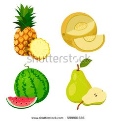 Set of fruits: pineapple, pear, melon and watermelon. White background. Vector image