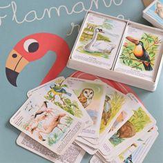 jeu de 7 familles Oiseaux vintage - deco-graphic.com