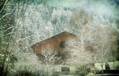 Winter mood - null