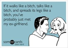 If it walks like a bitch, talks like a bitch, and spreads its legs like a bitch, you've probably just met my ex-girlfriend.
