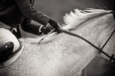 """SCOUTED: Horse & Rider- Lisa Cueman Photography. """"Horse & Rider I."""""""