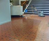Carpet Cleaning Services,Auckland Carpet Cleaner,Vinyl Floor Cleaner Auckland Vinyl Floor Cleaners, Cleaning Services, Vinyl Flooring, Auckland, Carpet, Home Decor, Housekeeping, Maid Services, Decoration Home