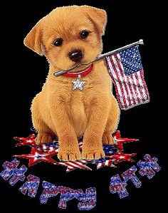 Happy 4th of July Pictures | Happy 4th Puppy July 4th Independence Day Myspace Graphics - Cool ...