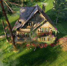 shaded enchanted cottage