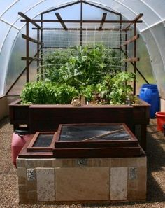 I want this so bad! Aquaponic system recycles water through a vertical garden with a fish pond at the bottom, you can eat what you grow and the fish too! completely self contained and sustainable style of gardening