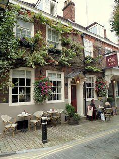 trevorlovestotravel:  The Old Vine Winchester, England (by Trevor Goyette)
